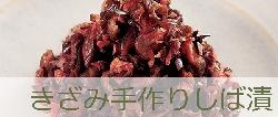 banner_kizamiteshiba.jpg