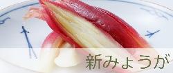 banner_shinmyouga.jpg